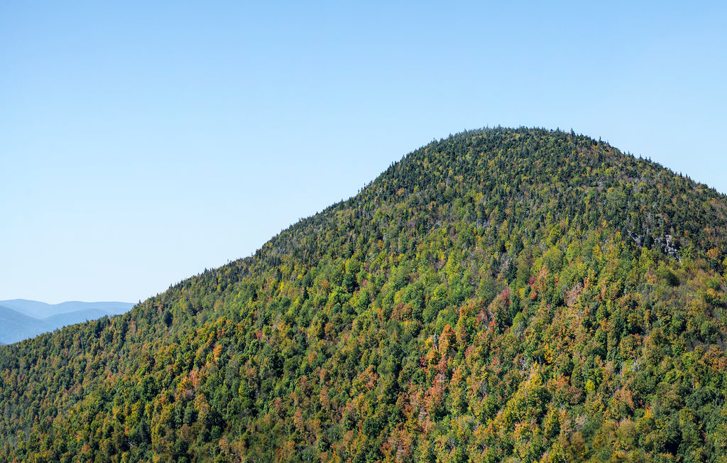 Historic Escarpment (10/14)