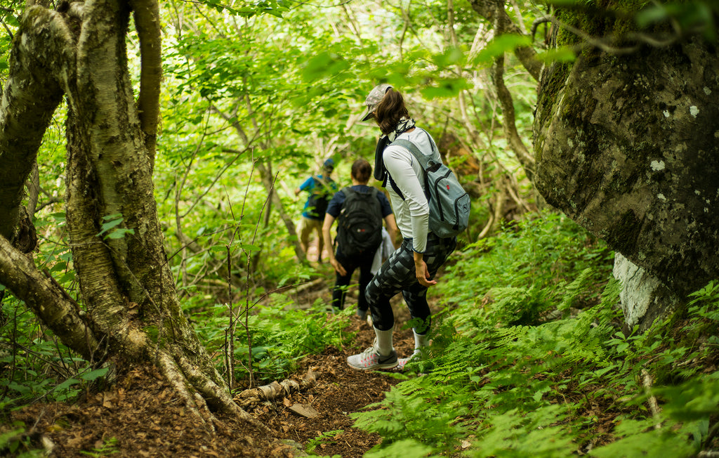 Reopening: Catskill 3500 Day Hike (8/29)