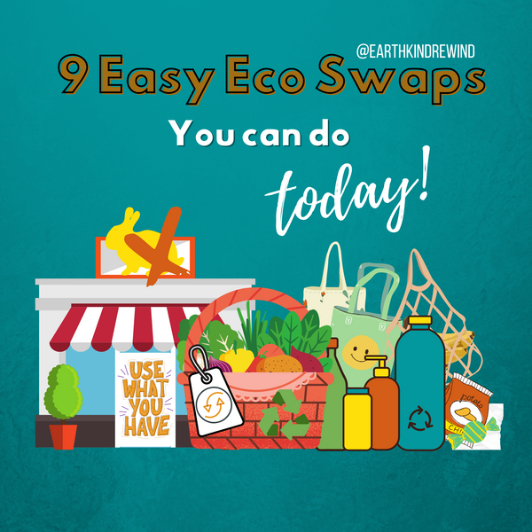 9 Simple Eco Swaps You Can Do Today!