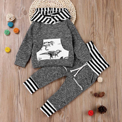Toddler/Baby Dinosaur Long Sleeve Hoodie Top and Pants Set