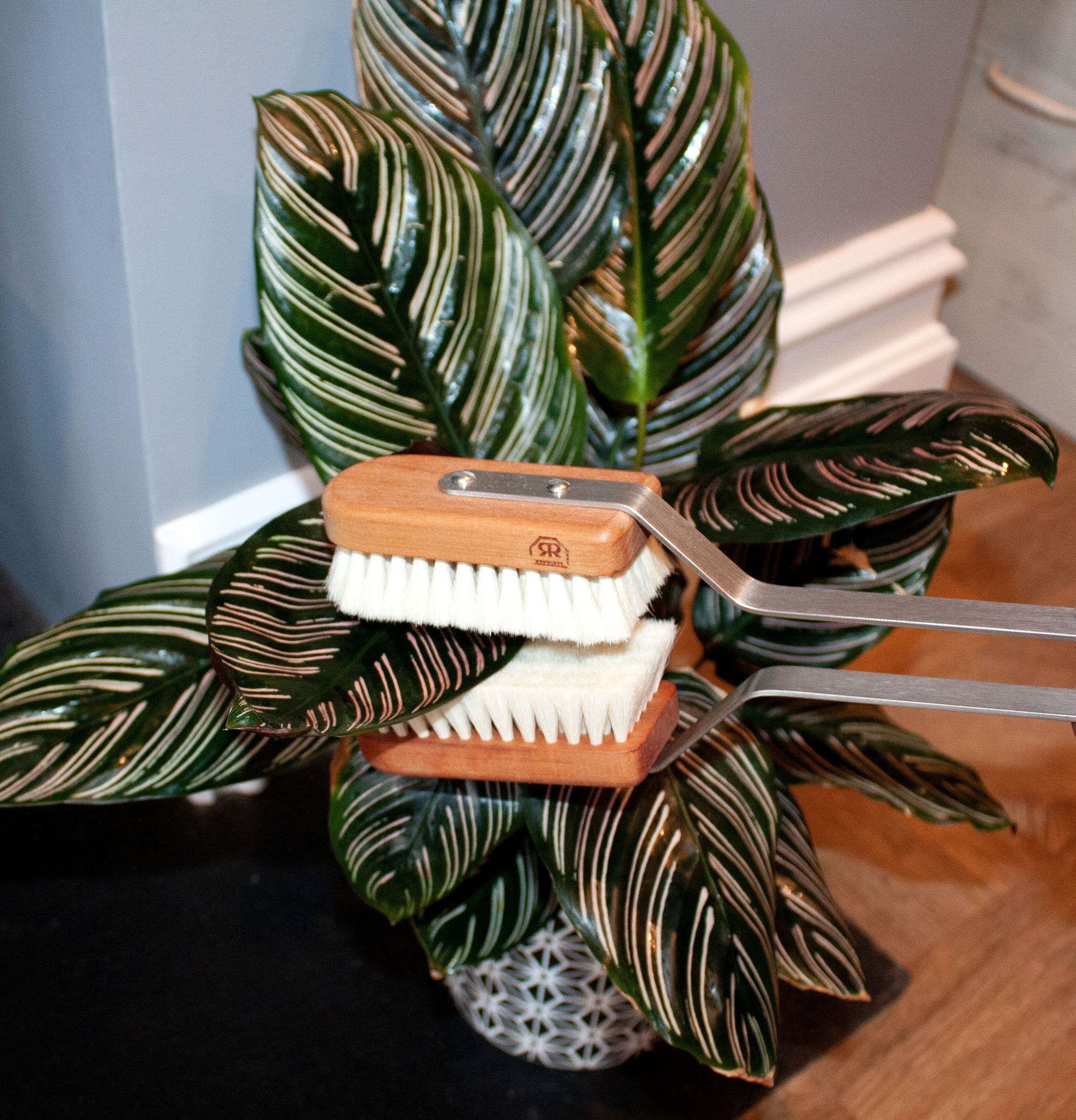 Redecker Houseplant Super soft LeafCleaning Brush with Pear Wood
