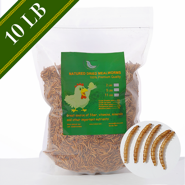 Euchirus 10LB Non-GMO Dried Mealworms for Wild Bird Chicken Fish,High-Protein,Large Meal Worms.