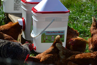5 Gallon Chicken Waterer - Horizontal Side Mount Poultry Nipples - for Up to 30 Chickens - Coop Feeder