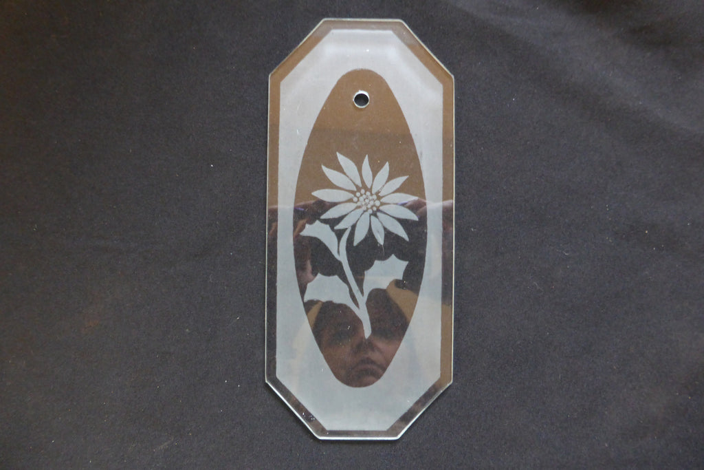 Vintage Flower Etched Glass Door Finger Plate (10 Available)
