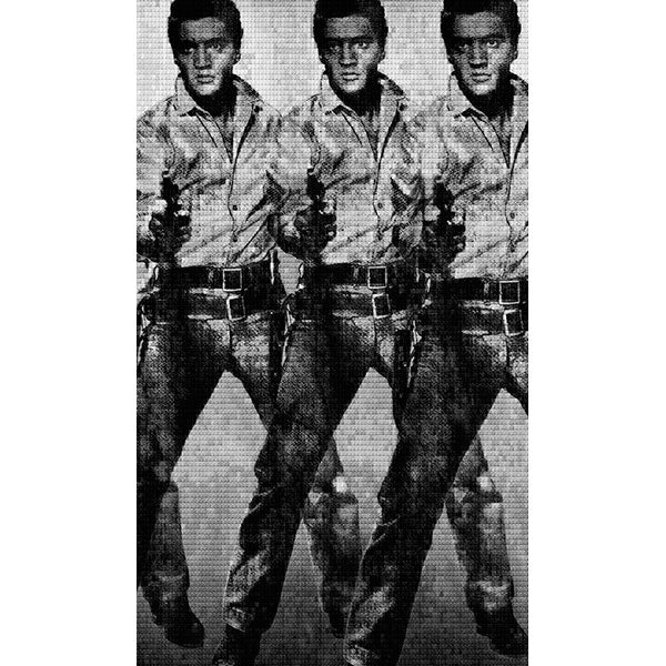 LOVE YOU TENDER, KILL ME SOFTLY, ELVIS vs WARHOL, 2014 x 3