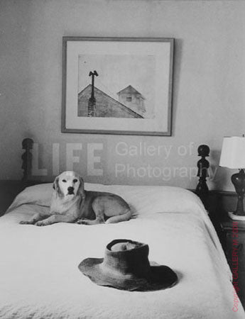 Andrew Wyeth's Hat, Bed and Dog by Alfred Eisenstaedt