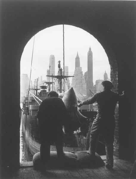 Unloading Coffee at Brooklyn Dock by Andreas Feininger