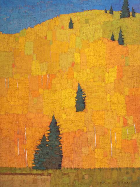 Scattered Pines and Aspen Patchwork, 2018-2019