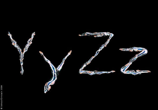 Dance Font - Y and Z by Howard Schatz