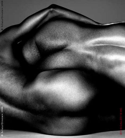 Folds Study 1432 by Howard Schatz