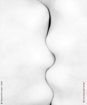 Folds Study 1070 by Howard Schatz