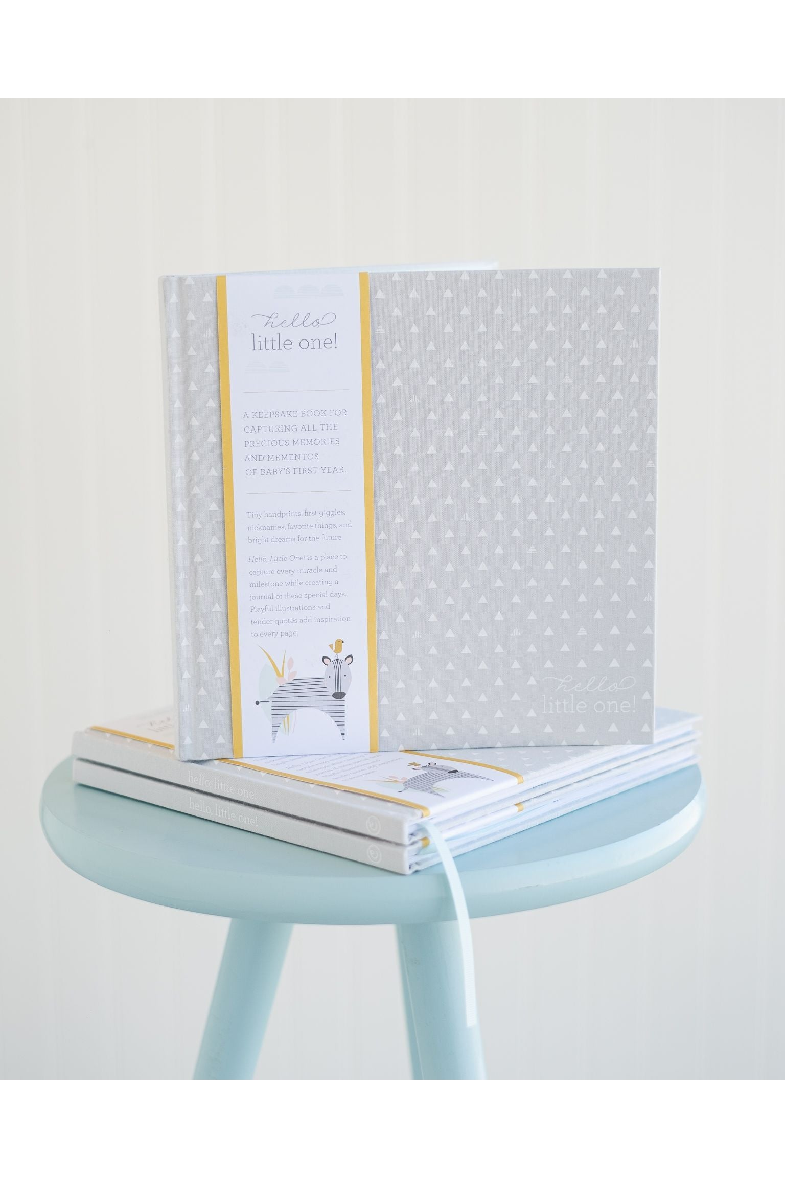 Keepsake Baby Book Hello Little One