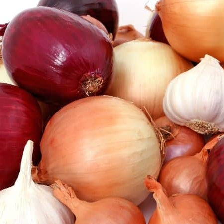 Order Bulb-Forming Onion Plants Now For Bountiful Harvest Come Fall