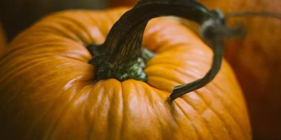 Pumpkins For Eating & Just For Fun