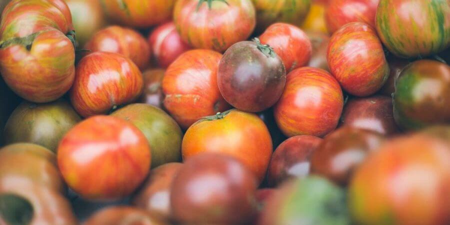 Heirlooms Versus Hybrids—Which Are Best for You?