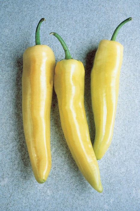 Hungarian Yellow Hot Wax or Hot Banana Pepper Seeds