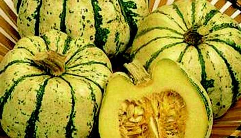 Sweet Dumpling Winter Squash Seeds