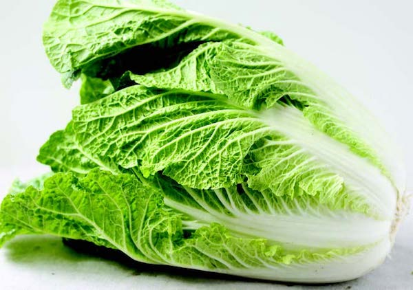 Bulk: China Express Hybrid Chinese Cabbage