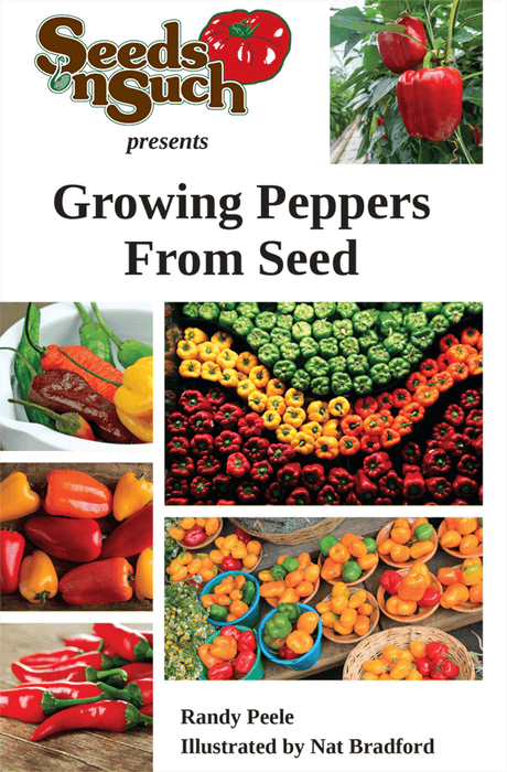 Growing Peppers From Seed - Pepper Growing Guide