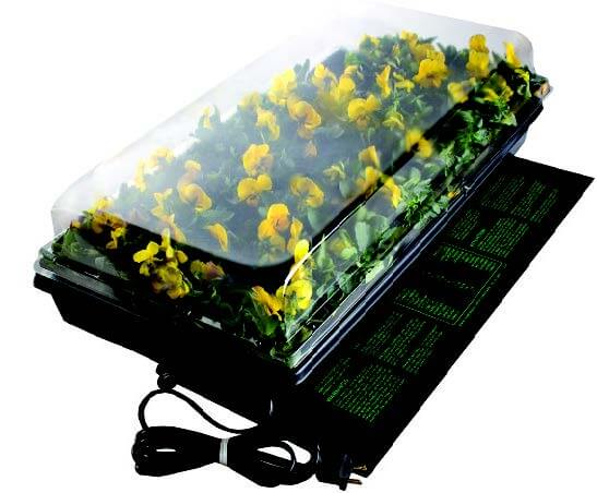 One-Tray Germination Station with Heat Mat