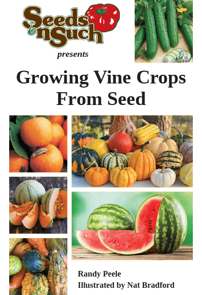 Growing Vine Crops from Seed - Vine Crops Growing Guide
