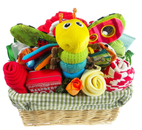 Deluxe Bright Baby Gift Flower Basket - Say It Baby