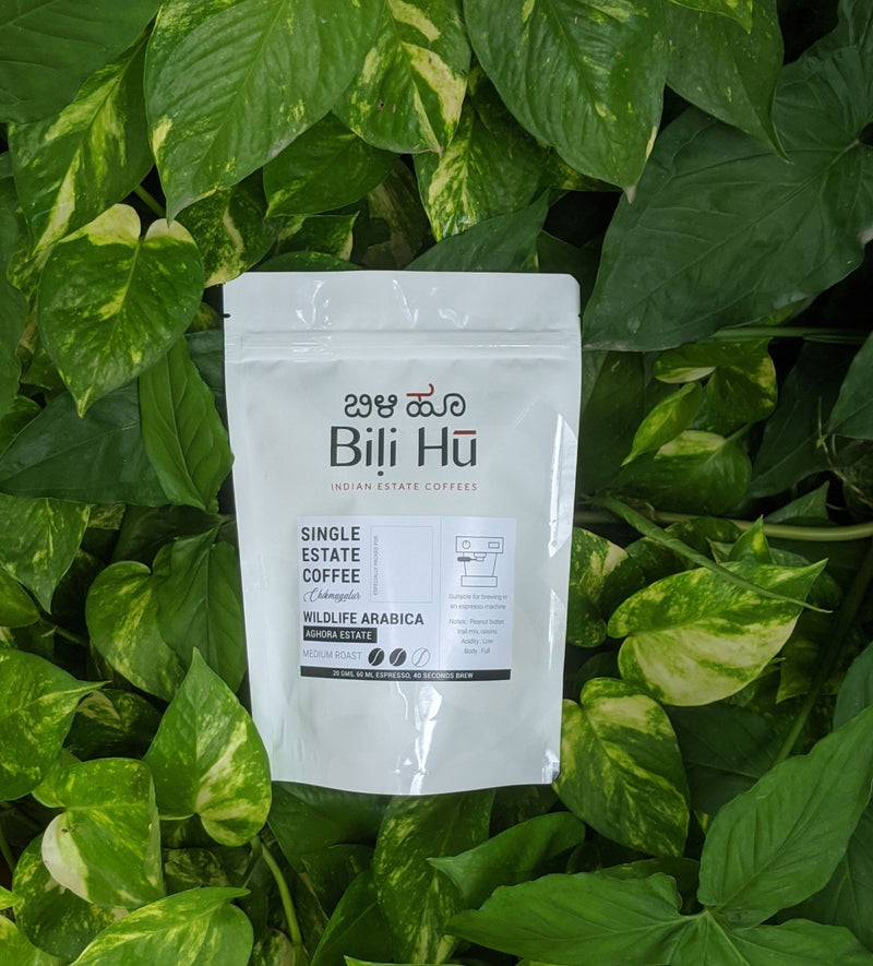 Bili Hu Single Estate Coffee - Aghora (70g)