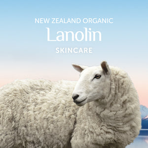Alpine Silk | Organic Lanolin Skincare banner with sheep.