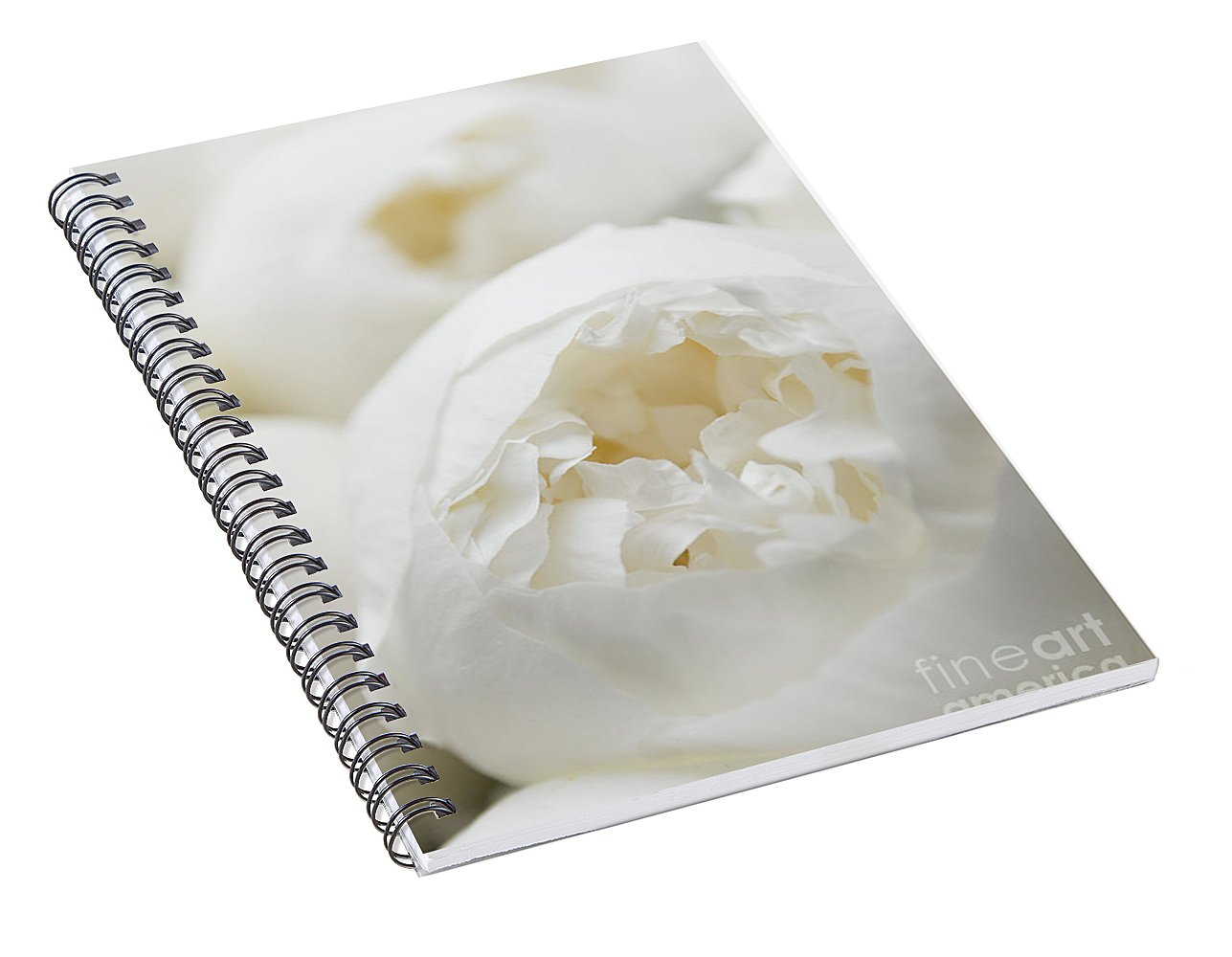 Close up of Peonies - Spiral Notebook