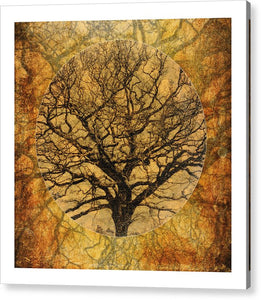 Golden Autumnal Trees - Acrylic Print