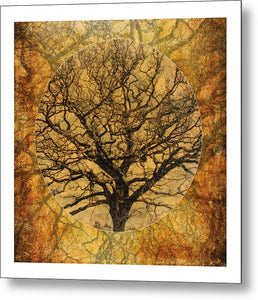 Golden Autumnal Trees - Metal Print