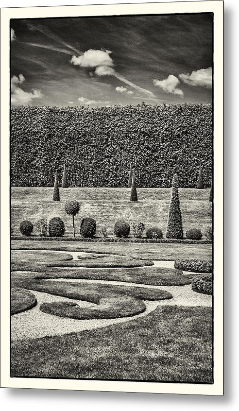 Hampton Court The Privy Garden BW - Metal Print