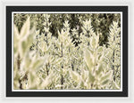 Load image into Gallery viewer, Leaves 1 - Framed Print