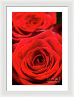 Load image into Gallery viewer, Red Roses - Grand Prix - Framed Print