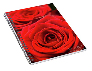 Red Roses - Grand Prix - Spiral Notebook