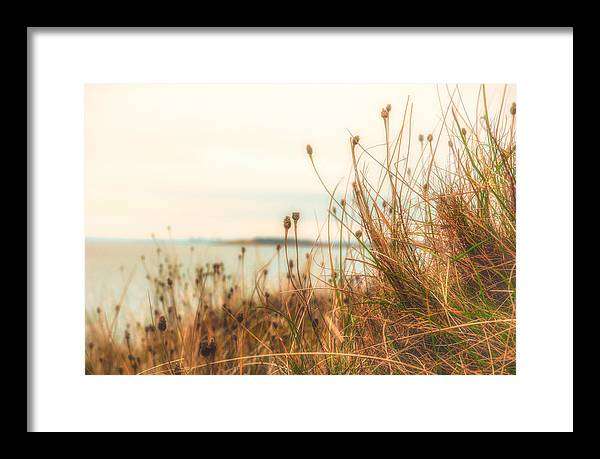 Scottish coastline - Framed Print