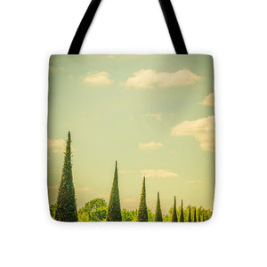 The Knot Garden's Triangular Landscaping - Tote Bag