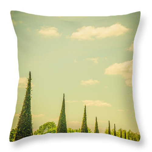 The Knot Garden's Triangular Landscaping - Throw Pillow