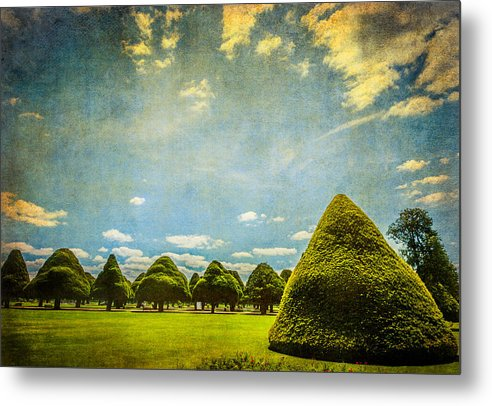 Triangular Trees 001 - Metal Print