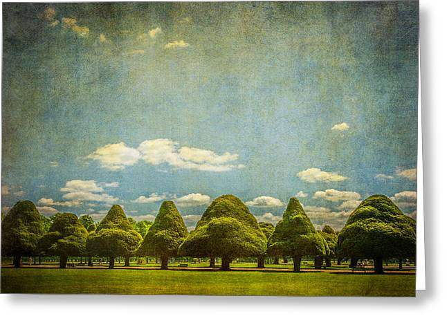 Triangular Trees 003 - Greeting Card