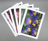 The Paper Papier Greetings Pack #10. The Geof Burbidge Photographic Collection. Package of Six Handmade Greeting Cards.