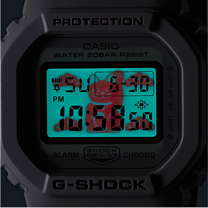 Casio G-Shock DW-5600TMN-7JR 日本版