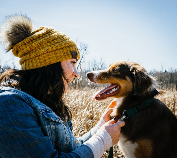 10 Tips to Practice Healthy Hygiene With Your Pets