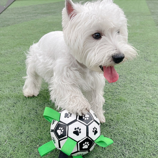 Paw-Printed Football Toy for Dogs
