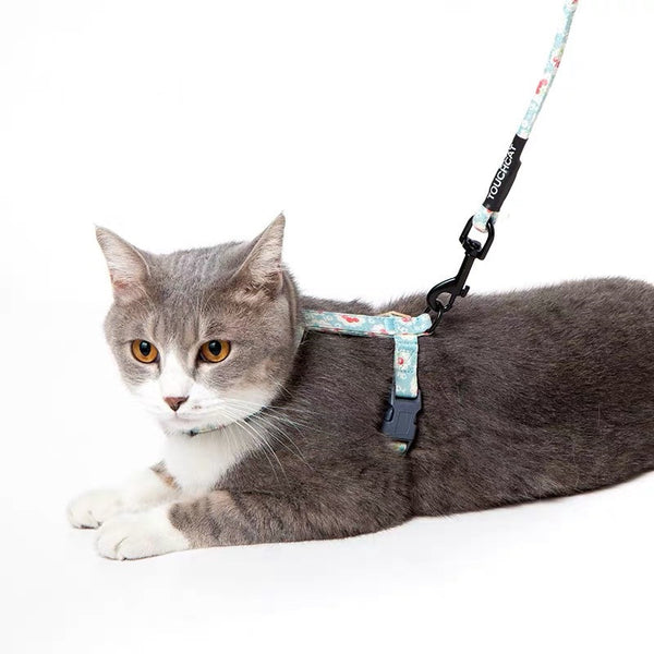 Cute Cat Harness and Leash