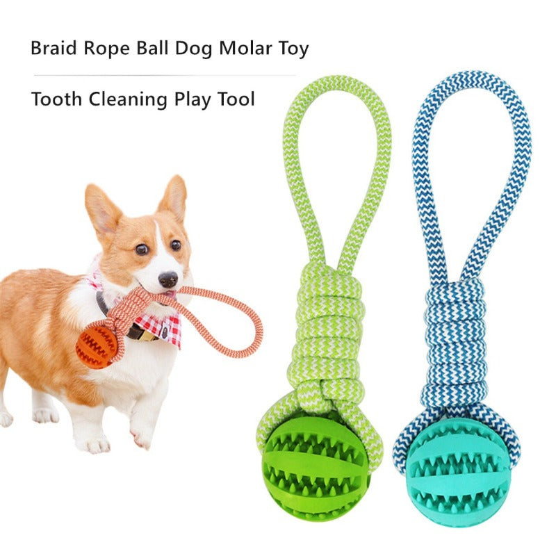 Braided Chewing Rope