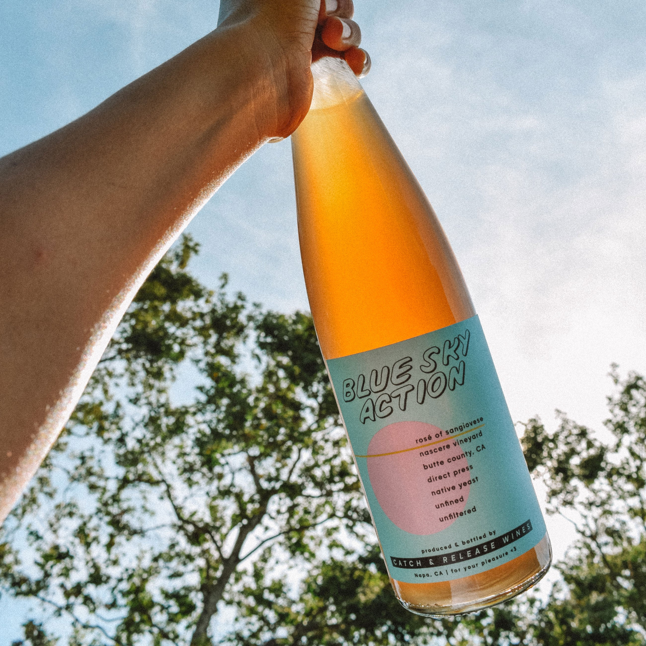 Catch & Release Wines Blue Sky Action Natural Rosé