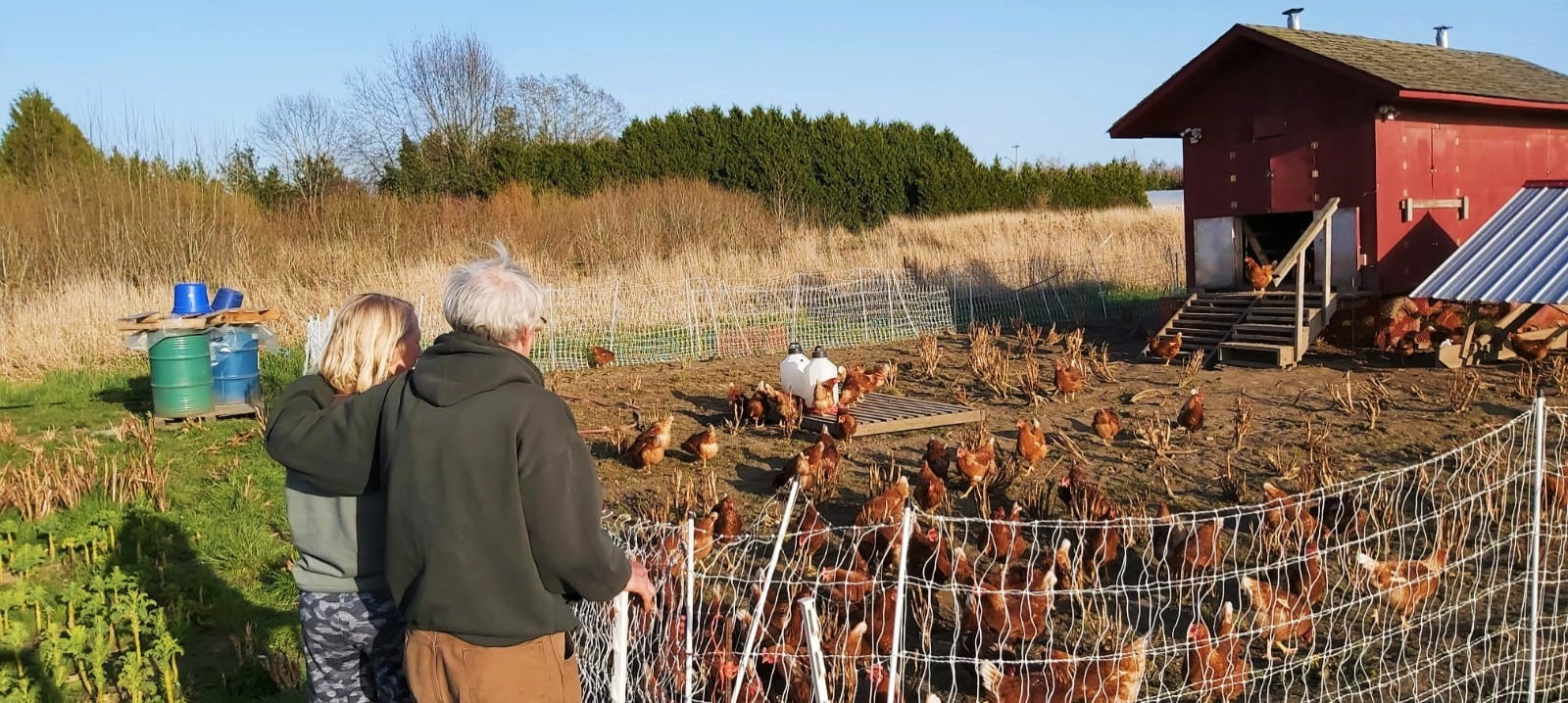 Farmer and Chicken Coops