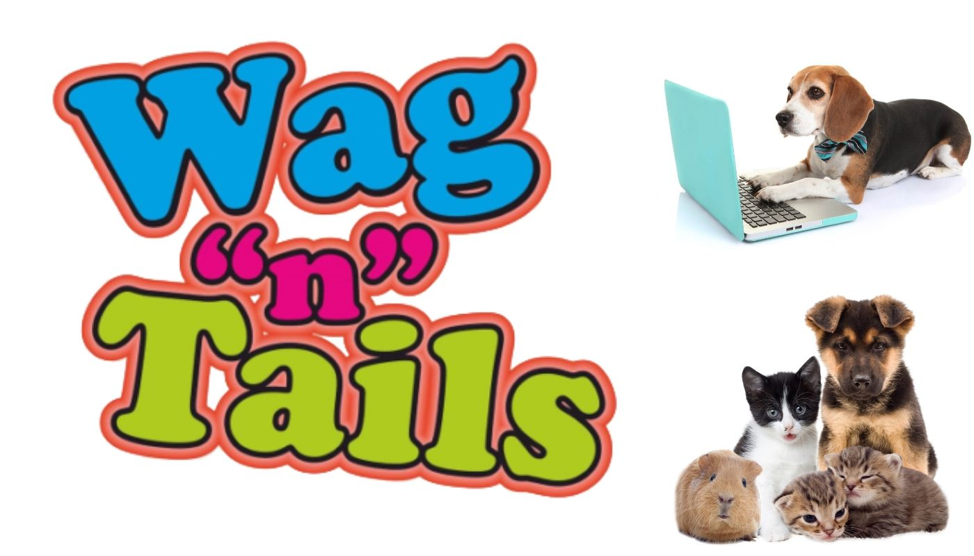 About Wag'n'Tails Pet Shop