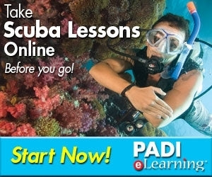 PADI Open Water Diver Course E Learning Only